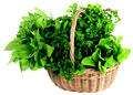 Fresh_herbs_in_basket